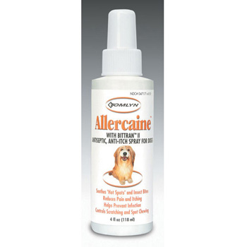 Allercaine Spray 4 oz