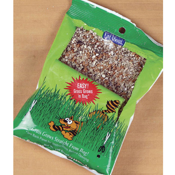 CAT GRASS 100 GM