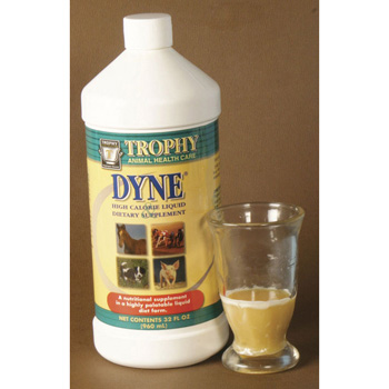 Dyne, High calorie supplement, 32 ounce