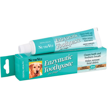 Enzymatic Toothpaste Chicken Flavored