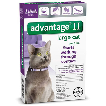Bayer Advantage II for Large Cats 9 lb & Over  6 Dose