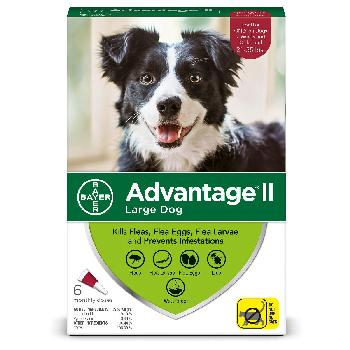Bayer Advantage II for Large Dogs, 21-55 pounds, 6 doses