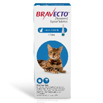 RX Bravecto Topical for Medium Cats 6.2-13.8 lbs 1 dose