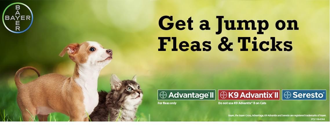 Flea Amp Tick Control Pet Supply And Prescription Products