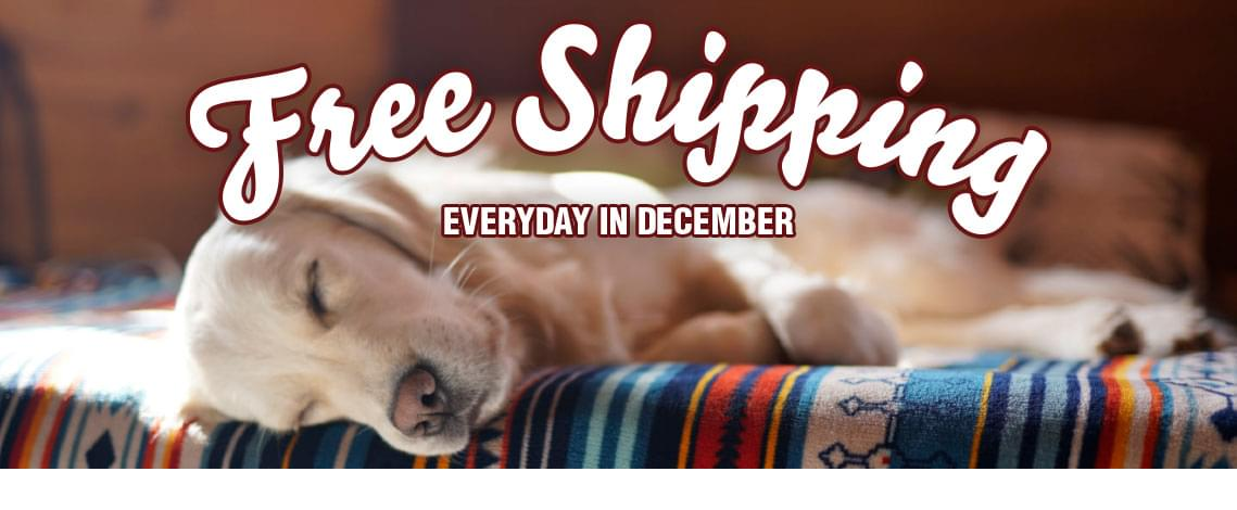 Free Shipping Everyday in December