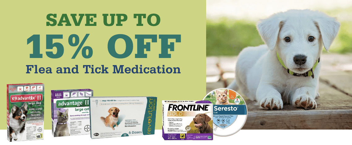 Save on Flea & Tick Medication