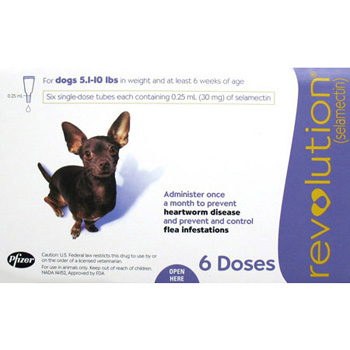 Rx Revolution Dog 5-10 lb   6 Dose