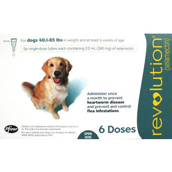 Rx Revolution Dog 41-85 lb   6 Dose