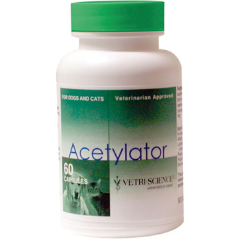 Digestion Support Medication