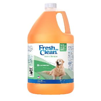 Fresh 'n Clean Scented Shampoo, Classic Fresh Scent (Ready-to-use), 1 Gallon