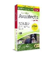 Vetality Avantect II for Large Dogs, 21-55 Pounds, 4 Doses