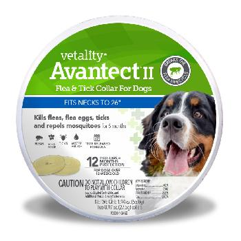Vetality Avantect II Flea & Tick Collar for Dogs, fits neck to 26 inches, 12 month protection, 2 ct