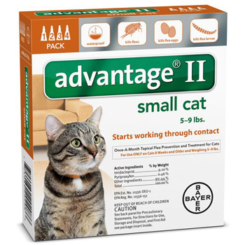 Bayer Advantage II Small Cat 5-9 lb   4 Dose