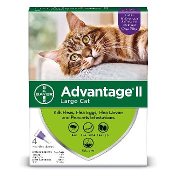 Advantage II Flea Treatment for Large Cats, 9 lbs and over, 4 doses