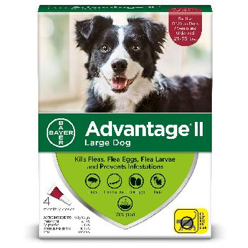 Bayer Advantage II for Large Dogs, 21-55 pounds, 4 doses