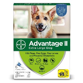 Bayer Advantage II for Extra Large Dogs, Over 55 pounds, 6 doses