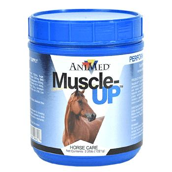 AniMed Muscle-Up Dietary Supplement for Horses 2.5 lb