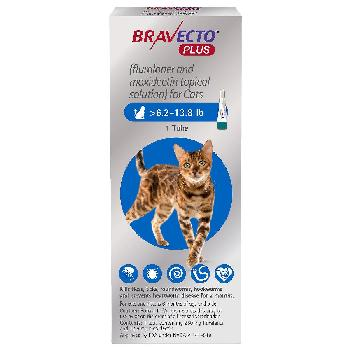 Bravecto Plus for Cats, 6.2-13.8 lbs, 250 mg, 1 treatment (Blue Box)