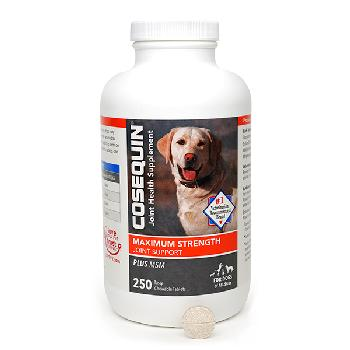 Cosequin Maximum Strength Plus MSM Chewable Tablets, 250 count