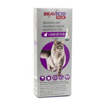 Bravecto Plus for Cats, 13.8-27.5 lbs, 500 mg, 1 treatment (Purple Box)